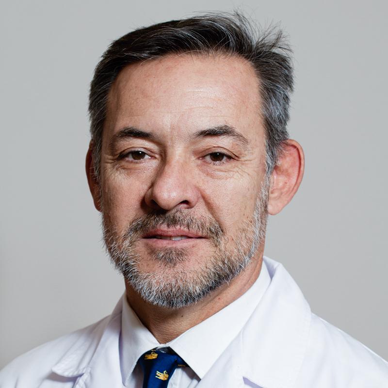 Daniel Jose Maldonado Saluzzi